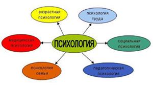 Контрольные курсовые работы и экзаменационные вопросы по психологии  контрольные работы психология